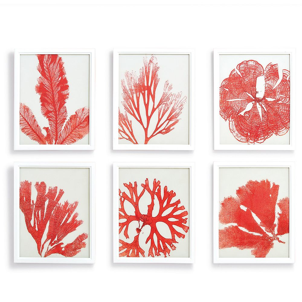 Set of 6 Pink Reef Coral Print Wall Art