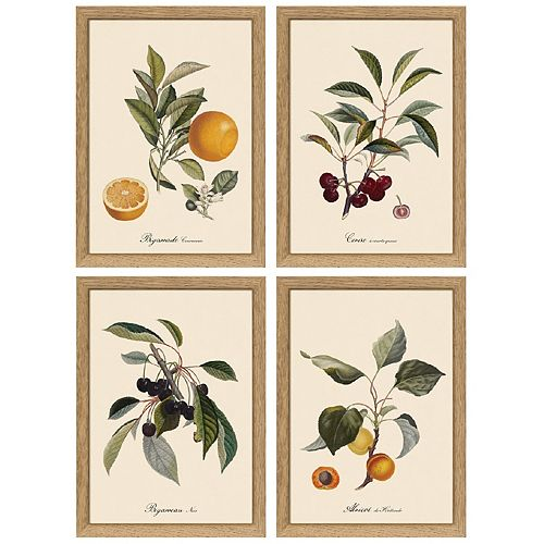 "Set of 4 Botanical Fruit 6"" x 8"" Wall Art"