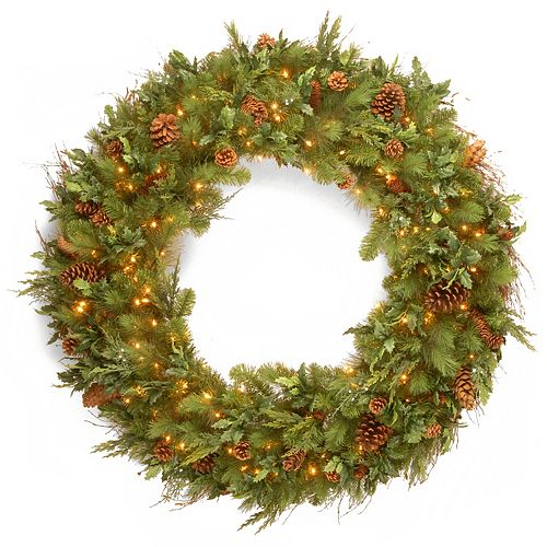 National Tree Co. 48-in. Juniper Mix Pine Wreath & Warm White LED Lights