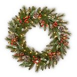 National Tree Co. 24-in. Frosted Pine Berry Wreath & Battery Operated Lights