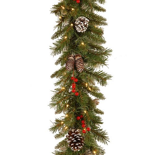 National Tree Co. 9-ft. Frosted Berry Garland & Clear Lights
