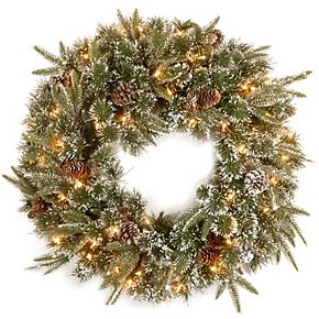 National Tree Co. 24 -in. Liberty Pine Wreath & Clear Lights