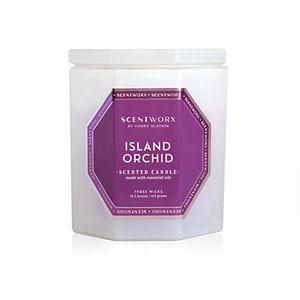 ScentWorx by Harry Slatkin Island Orchid 14.5-oz. Candle Jar