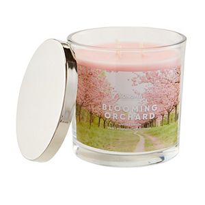 SONOMA Goods for Life® Blooming Orchard 14-oz. Candle Jar