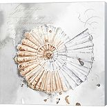Metaverse Art Blush Shell II Canvas Wall Art