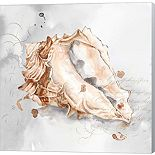 Metaverse Art Blush Shell III Canvas Wall Art