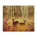 Trademark Fine Art Foggy Deer Wood Slat Wall Art