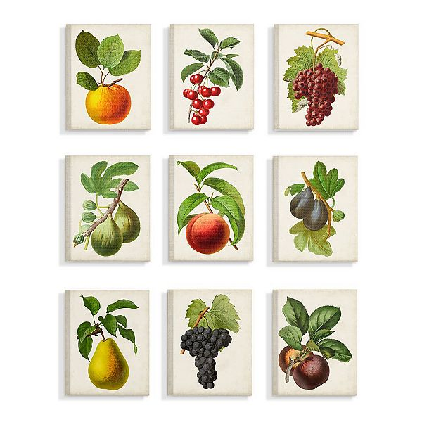 Stupell Home Decor Vintage Fruits, Vintage Wall Art For Dining Room