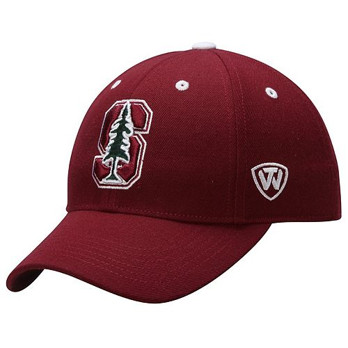 Stanford Cardinal Top of the World Dynasty Memory Fit Fitted Hat - Cardinal