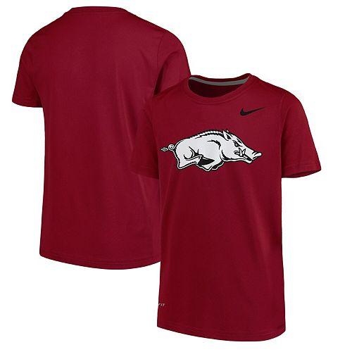Youth Nike Cardinal Arkansas Razorbacks Logo Legend Dri-FIT T-Shirt