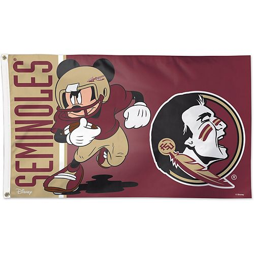WinCraft Florida State Seminoles Single-Sided 3' x 5' Deluxe Disney Flag