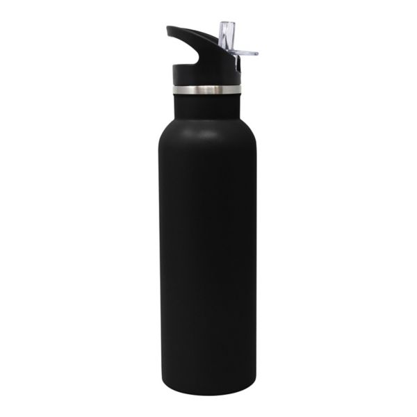 38++ Wellness brand stainless steel bottle ideas
