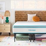 Linenspa Signature 12-in. Hybrid Medium-Plush Mattress & Platform Base