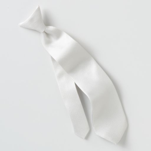 Chaps Solid Clip-On Tie