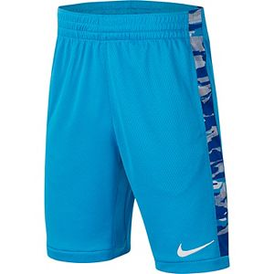 Boys 8-20 Nike Trophy Printed Training Shorts