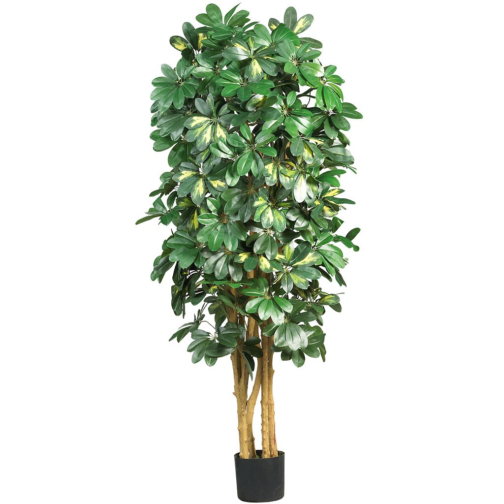 nearly natural SilkSchefflera Tree