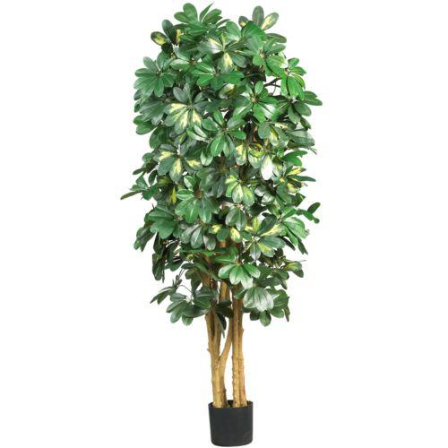 nearly natural Silk Schefflera Tree