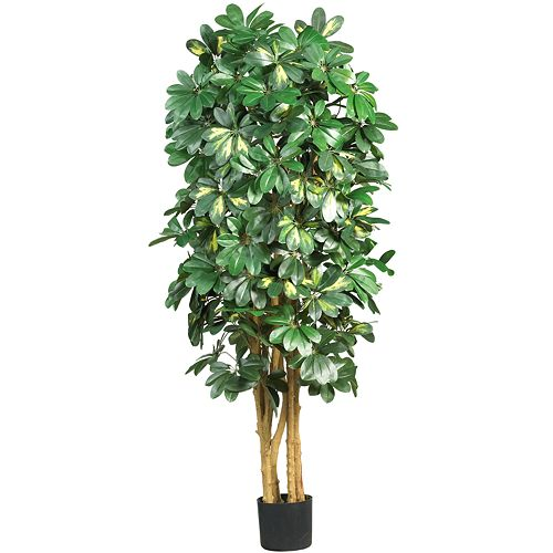 nearly natural Silk Schefflera Tree