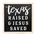 New View Texas Raised Framed Wall Decor