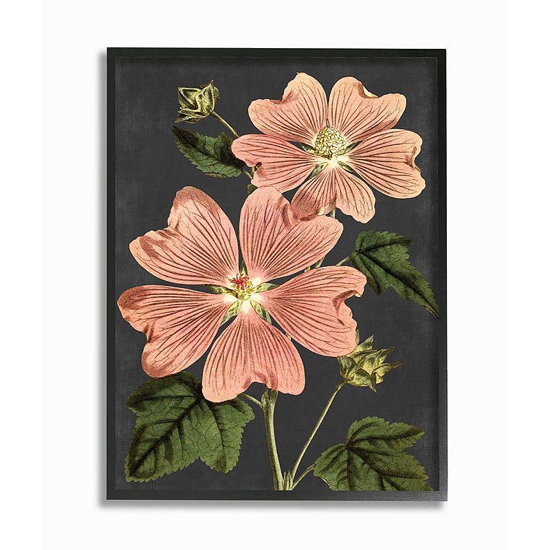 Stupell Home Decor Botanical Dawing Pink Flower Framed Wall Art, 16X20
