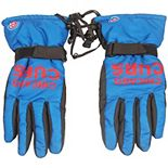 Chicago Cubs Team Color Insulated Gloves