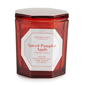 ScentWorx Spiced Pumpkin Apple 14.5 oz. Candle