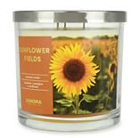 SONOMA Goods for Life® 14-oz. Sunflower Fields Candle Jar