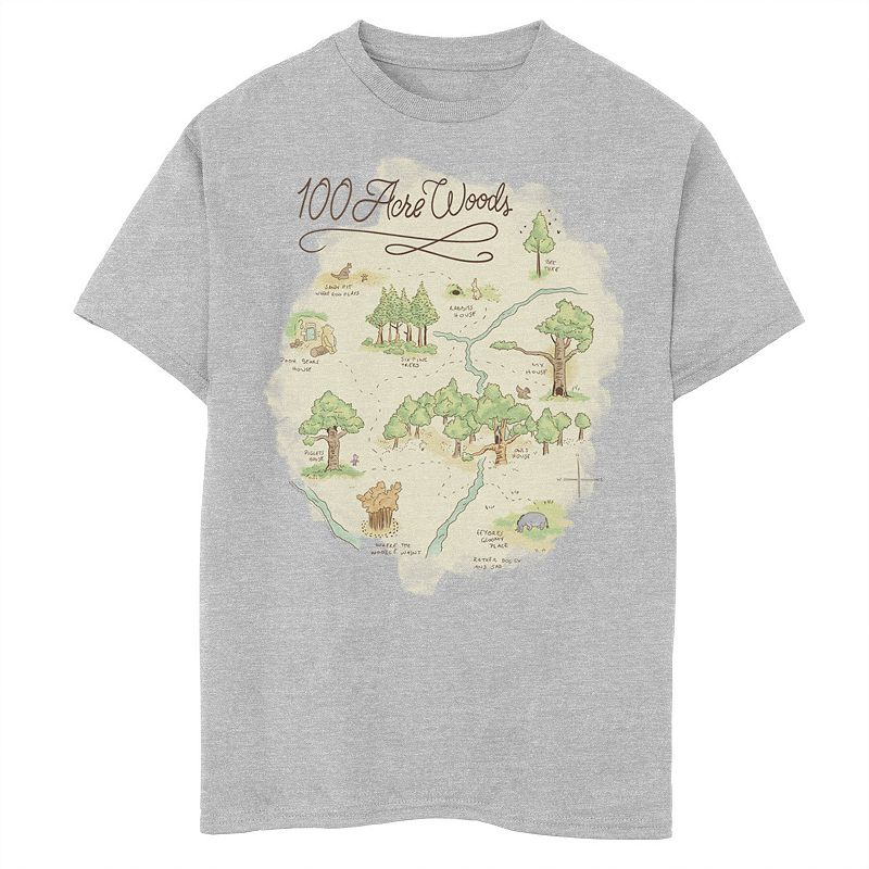 Disney's Winnie the Pooh Boys 8-20 100 Acre Woods Map Graphic Tee, Boy's, Size: Large, Grey