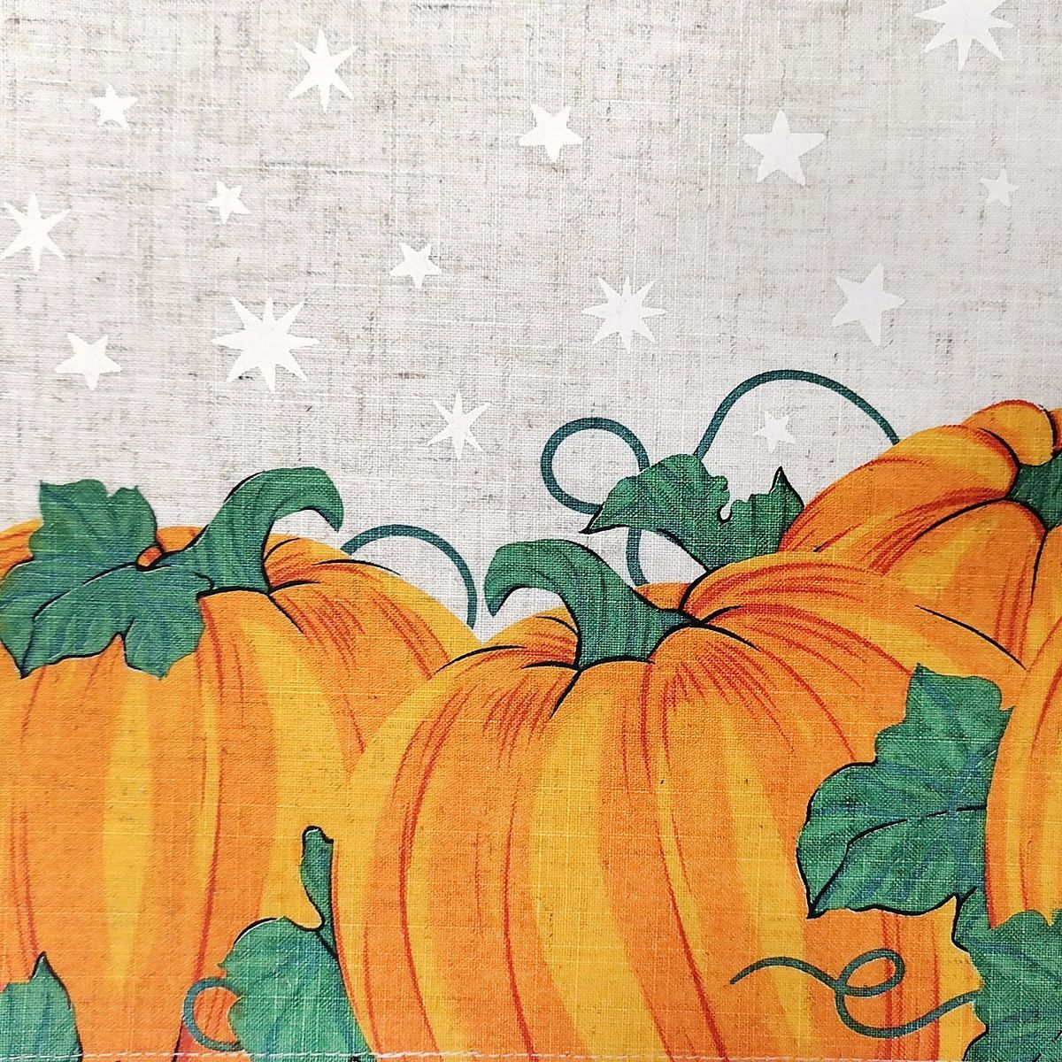 Celebrate Halloween Together Black Cat Placemat VQWF2