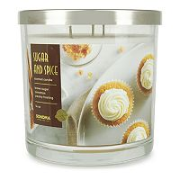 Deals on 3 Sonoma Goods 14-oz. Sugar & Spice Triple Pour 3-Wick Candle Jar