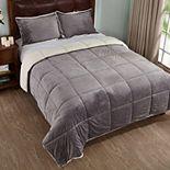 Dream On Sherpa Down-Alternative Comforter Set