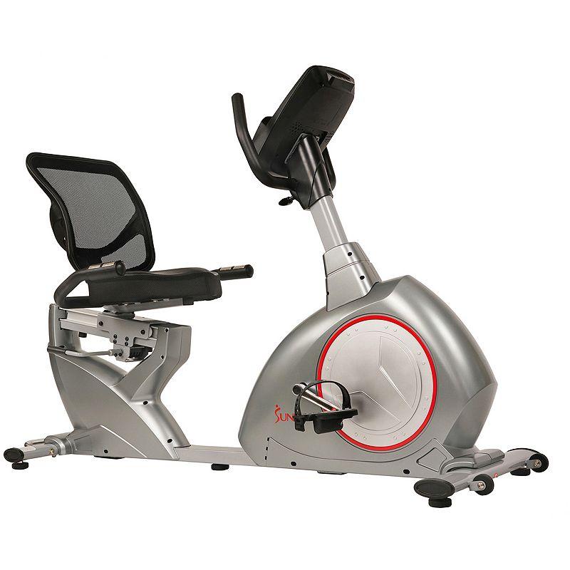 Sunny Health & Fitness SF-RB4880 Magnetic Recumbent Bike Exercise Bike, Grey