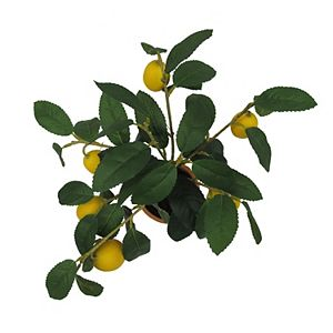 Sonoma Goods For Life Lemon Topiary Floor Decor