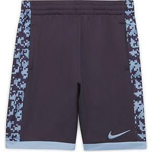 Boys 8-20 Nike Trophy Shorts