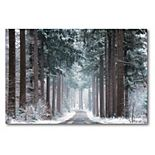 COURTSIDE MARKET Pines in Winter Dress Canvas Wall Art