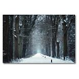 COURTSIDE MARKET Snow in Markelo Canvas Wall Art