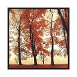 PTM Images Red Leaves in the Fall Framed Canvas Wall Art