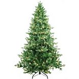 Kurt Adler 7-ft. Pre-Lit Clear Jackson Pine Artificial Christmas Tree