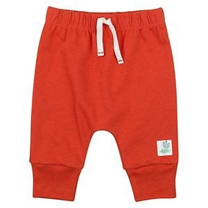 Baby Boy Mac & Moon 2-Pack Chameleon Print Pants