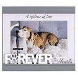 "Malden Forever Pet 4"" x 6"" Frame"