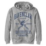 Boys 8-20 Harry Potter Ravenclaw Bold Team Seeker Graphic Fleece Hoodie