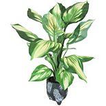 Sonoma Goods For Life® Artificial Hosta Plant Floor Decor