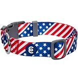 Blueberry Pet American Flag Dog Collar