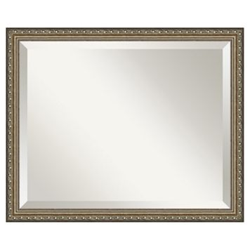 Amanti Art Parisian Silver Finish Traditional Wood Wall Mirror