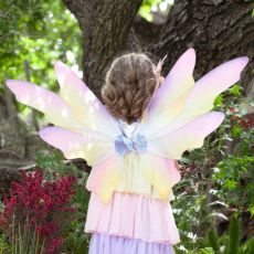 Dawn Fairy Wings