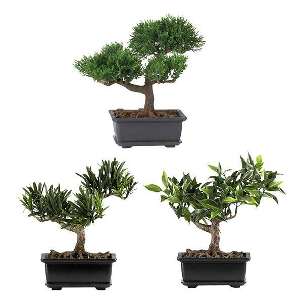 Nearly Natural 3 Pc Silk Bonsai Tree Set