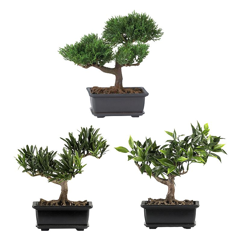 nearly natural 3-pc. Silk Bonsai Tree Set Lush leaves, bonsai trunks and artificial soil lend authenticity. Decorative planters provide a warm, modern touch. What's Included: Cedar bonsai tree Japanese bonsai tree Podocarpus bonsai tree 8 1/2W x 8 1/2H (each) Planters: 4H x 2 1/2L x 6L Silk/ceramic Wipe clean  Size: One Size. Color: Multicolor. Gender: unisex. Age Group: adult.