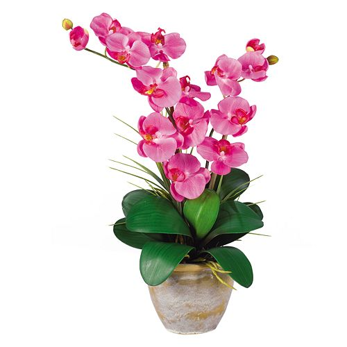 Nearly Natural Silk Phalaenopsis Orchid Arrangement $ 29.99