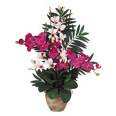nearly natural Silk Phalaenopsis & Dendrobium Orchid Arrangement
