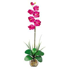 nearly natural Liquid Illusion Silk Phalaenopsis Orchid Floral Arrangement